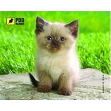 Коврик для мыши Podmyshku Сиамский котик